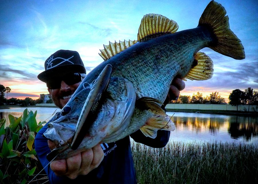 A really nice largemouth bass by our US mate Rocco Cantalupo, on the Espetit 140